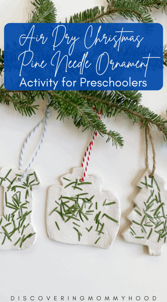 How To Make Beautiful Clay Nature Ornaments