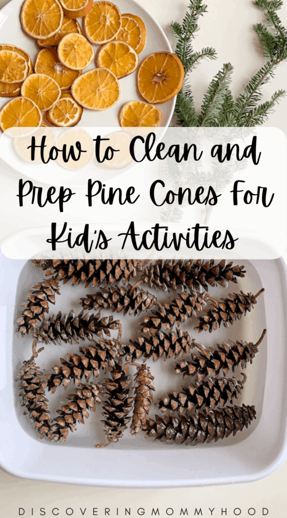 How to Prep and Clean Pine Cones for Kid's Activities